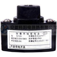 上海耐腐蚀管道伴热保温电伴热带(FZH防爆终端接线盒)
