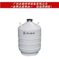 四川亚西 运输贮存两用液氮罐 YDS-30B-80 生物细胞低温储存罐
