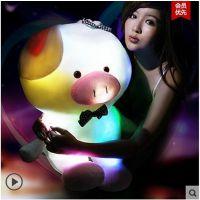 七彩音乐夜光抱枕会发光的猪兔子荧光公仔 圣诞节情人节礼品