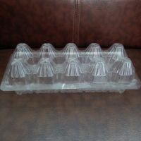 厂家直供一次性pvc透明塑料10枚鸡蛋托盒