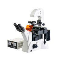上光 三目倒置荧光显微镜XDY-200