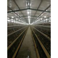 江苏裕丰禽业直销鸡粪有机肥速来订购
