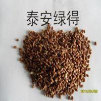 供应黑小麦种子山东黑小麦种子厂家批发