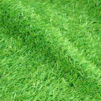 仿真草坪塑料人工假草皮人造草坪地毯草坪楼顶阳台幼儿园酒店草皮