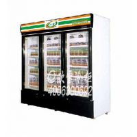 供应天河冷冻食品展示冷柜厂家