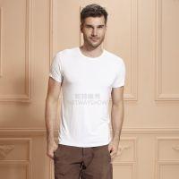 2015夏季男士T恤圆领潮男装莫代尔修身百搭打底衫外穿短袖 批发