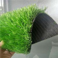 时宽SK403HZ草皮,曲直仿真人工草皮,PE材质绿色环保塑料草坪