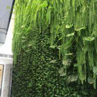 真植物墙 雾森造景 数控水帘 植物壁画