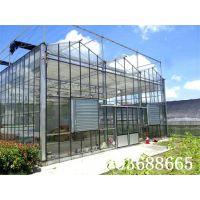 好的玻璃温室大棚建设公司-山东青州绿源温室工程有限公司
