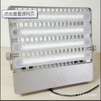 飞利浦户外广告牌照明投光灯BVP163/220W