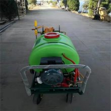 移动方便手推式喷雾器 自走式柴油喷雾器 润众