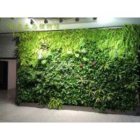 为您介绍真植物墙的好处——柏霖农业