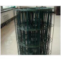 供应浸塑养殖荷兰网|pvc绿色铁丝网养鸡用网|小区防护网园林种植