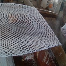 防护塑料网 平格塑料网带厂家 养鸡笼具