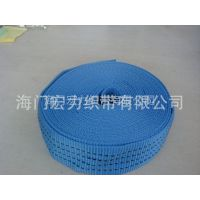 供应厂家热销 天蓝嵌线涤纶织带 规格可定制