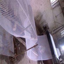 塑料养鸭网 小鸭床网 鸭床网