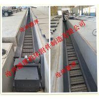 沧州德厚设计 制造废料输送线专用集中排屑机 集中排屑系统