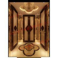 河南洛阳家用电梯装饰设计