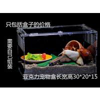 深圳沙井厂家供应亚克力透明鹦鹉 鸟笼箱 宠物养殖盒 爬虫养殖屋 宠物投食器定做