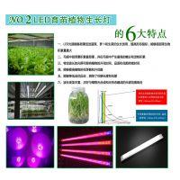大棚丝瓜补光灯 led植物生长灯