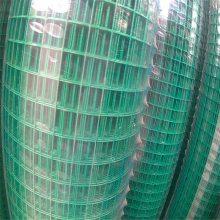 喷塑电焊网 铁丝网防护网 专业电焊网