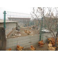 安徽畜牧养殖防护荷兰网/饲养专用波浪形护栏网
