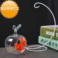 玻璃瓶微景观生态瓶 DIY创意小苹果礼品 迷你植物创意盆栽