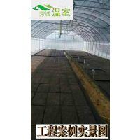 供应佛山蔬菜大棚FC-007、蔬菜大棚厂家、芳诚温室--18988967562