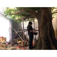 泉州门面橱窗小景设计施工