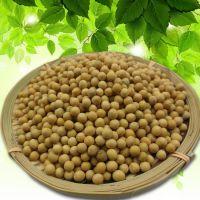 聚宝仓粮油制品农业 粮油作物  豆类 黄豆大量批发