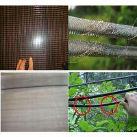 304不锈钢防鼠网厂家/防鼠电焊网价格是多少/防鼠不锈钢碰焊网怎么卖