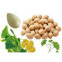 银杏果的功效与作用及食用方法
