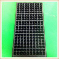 200穴PVC吸塑育苗穴盘 蔬菜瓜果多肉芽苗培育塑料穴盘加工定制