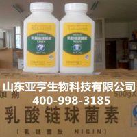 厂家直销食品级 乳酸链球菌素 量大包邮