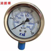 现货供应台湾铨仪侧接式耐震甘油压力表 液压元件