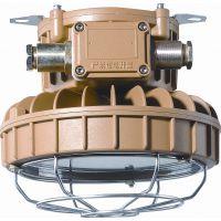 LED防爆应急灯30W