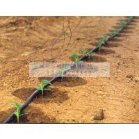 供应喷灌滴灌系统 滴灌设备器 滴灌管pe管