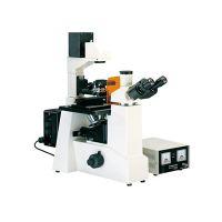 上光 倒置荧光显微镜XDY-100