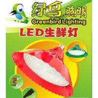 绿鸟照明直销爆款猪肉灯,生鲜灯,显色猪肉果蔬灯