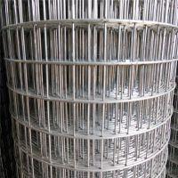 厂家直销 精品高精度304不锈钢电焊网 编织不锈钢网4目