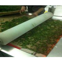 济南真诺微波优质厂家(图)|绿茶微波杀青|梅州微波杀青