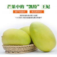 新鲜水果批发攀枝花芒果新鲜包邮5kg凯特大芒果青芒一件代发水果