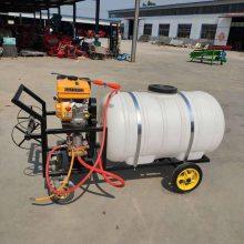宏兴牌高射程打药机 园林用喷雾器 手推式植保喷药机