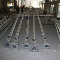 东莞市长期供应灯杆灯柱系列产品 厂家热销 欢迎来电洽谈13902594236