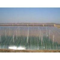 高性价大棚膜锦庆塑料供应,灌浆膜生产厂家