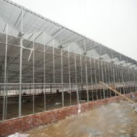 【优惠】15908013002 温室造价 温室结构设计 温室价格