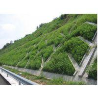 阳光雨护坡透水砖与滑坡植被——生态透水混凝土护坡