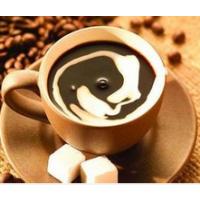 猫屎咖啡上海港进口报关