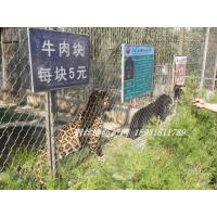 动物园安全网,柔性防护网,高强钢丝绳网
