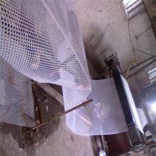养殖雏鸡用的塑料平网 PE塑料网 家禽养殖网多钱一米河北优盾厂家直销